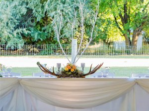 Unique Design Rentals antler centerpiece