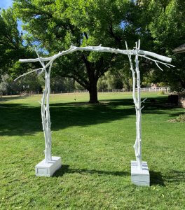Rustic White Branches Arch for Rent