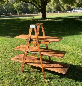 Ladder for rent, $75
